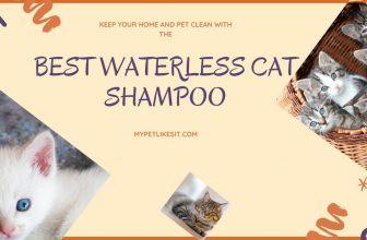 best-waterless-cat-shampoo